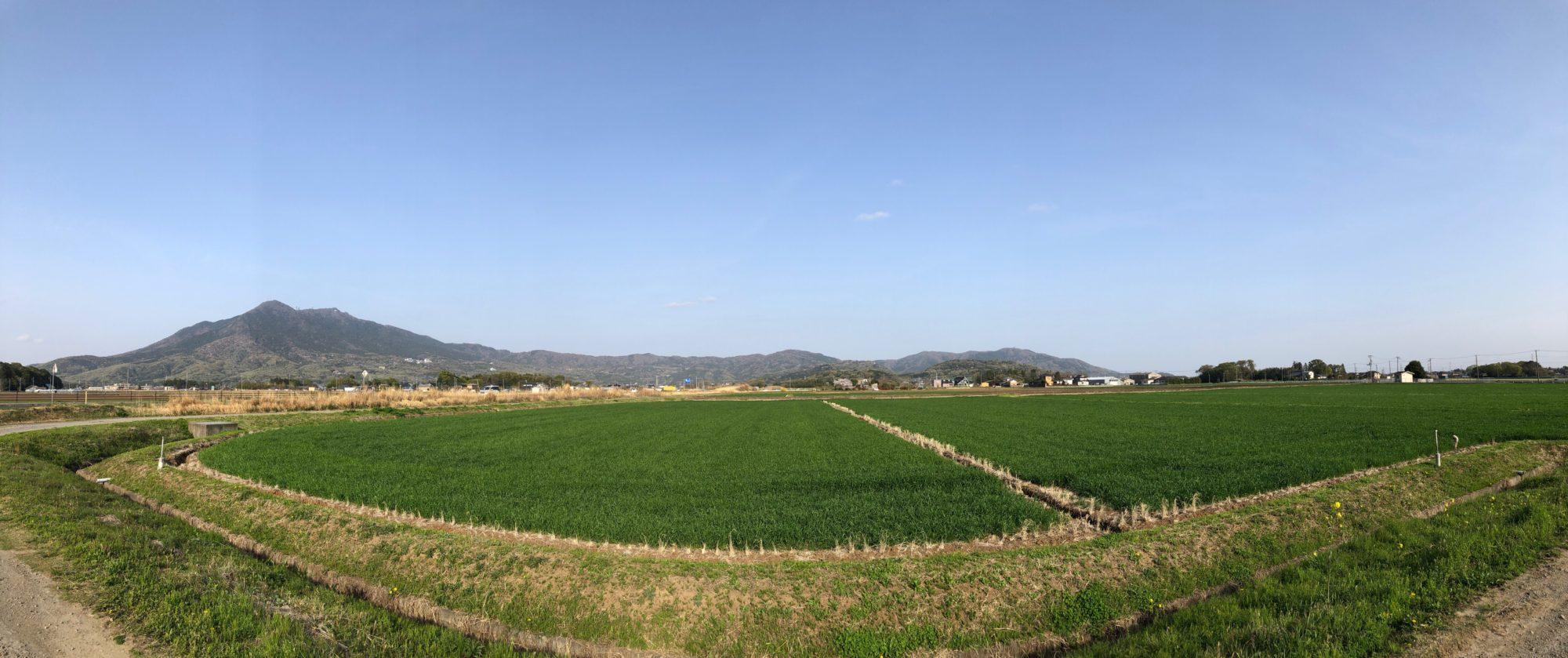 筑波山(左)と宝篋山(右端)