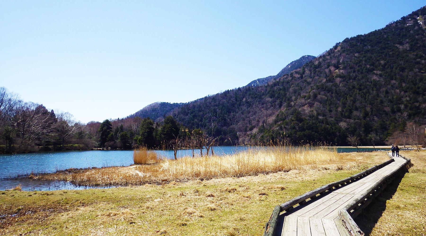 湯ノ湖北岸の木道