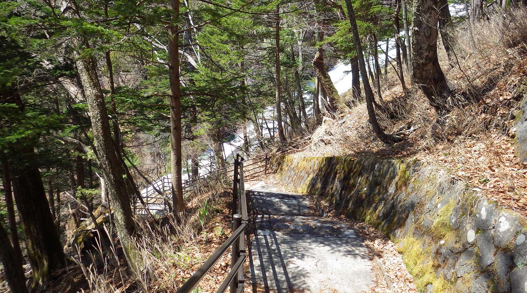 湯滝左岸の歩道と階段