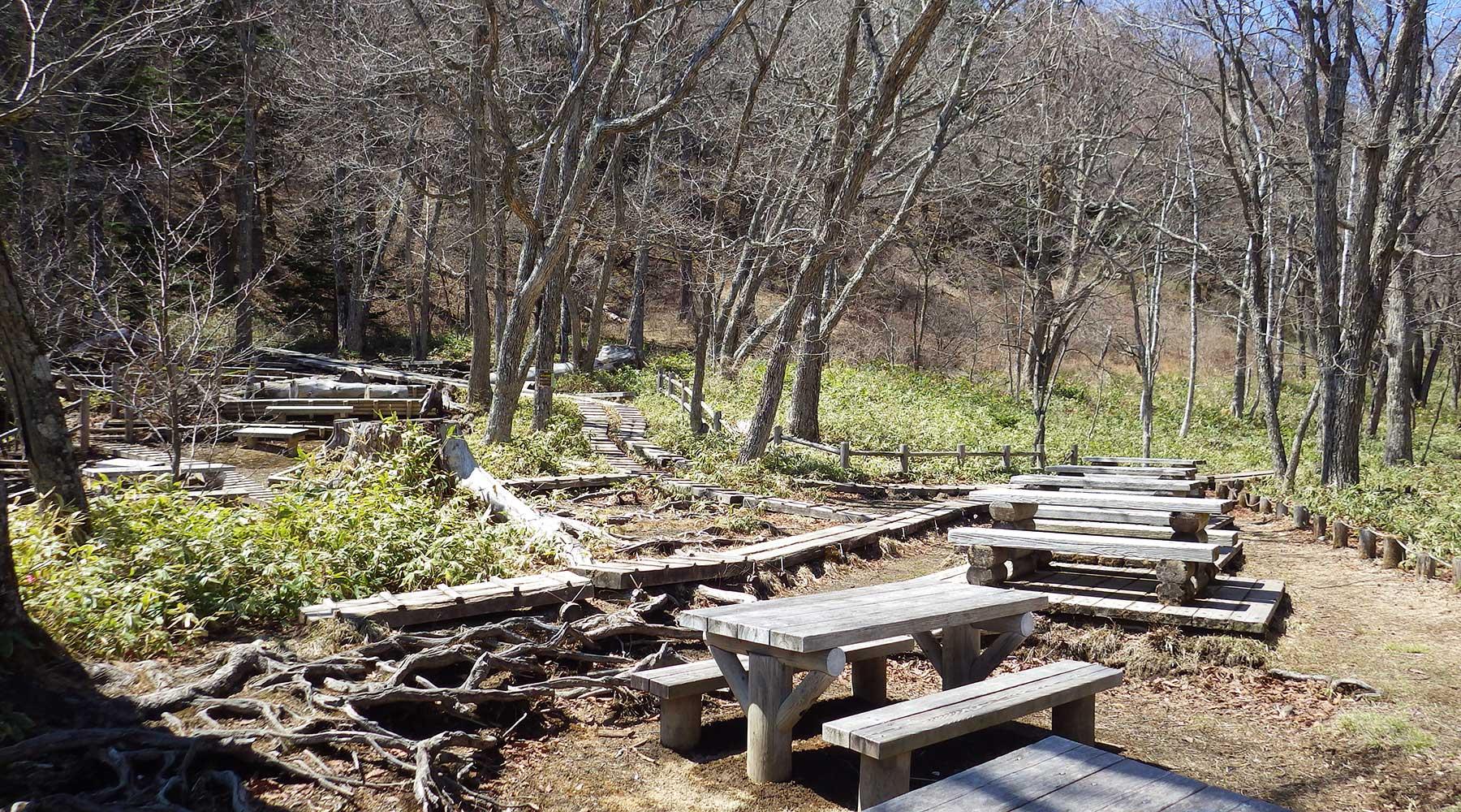 戦場ヶ原・泉門池のテーブルとベンチ