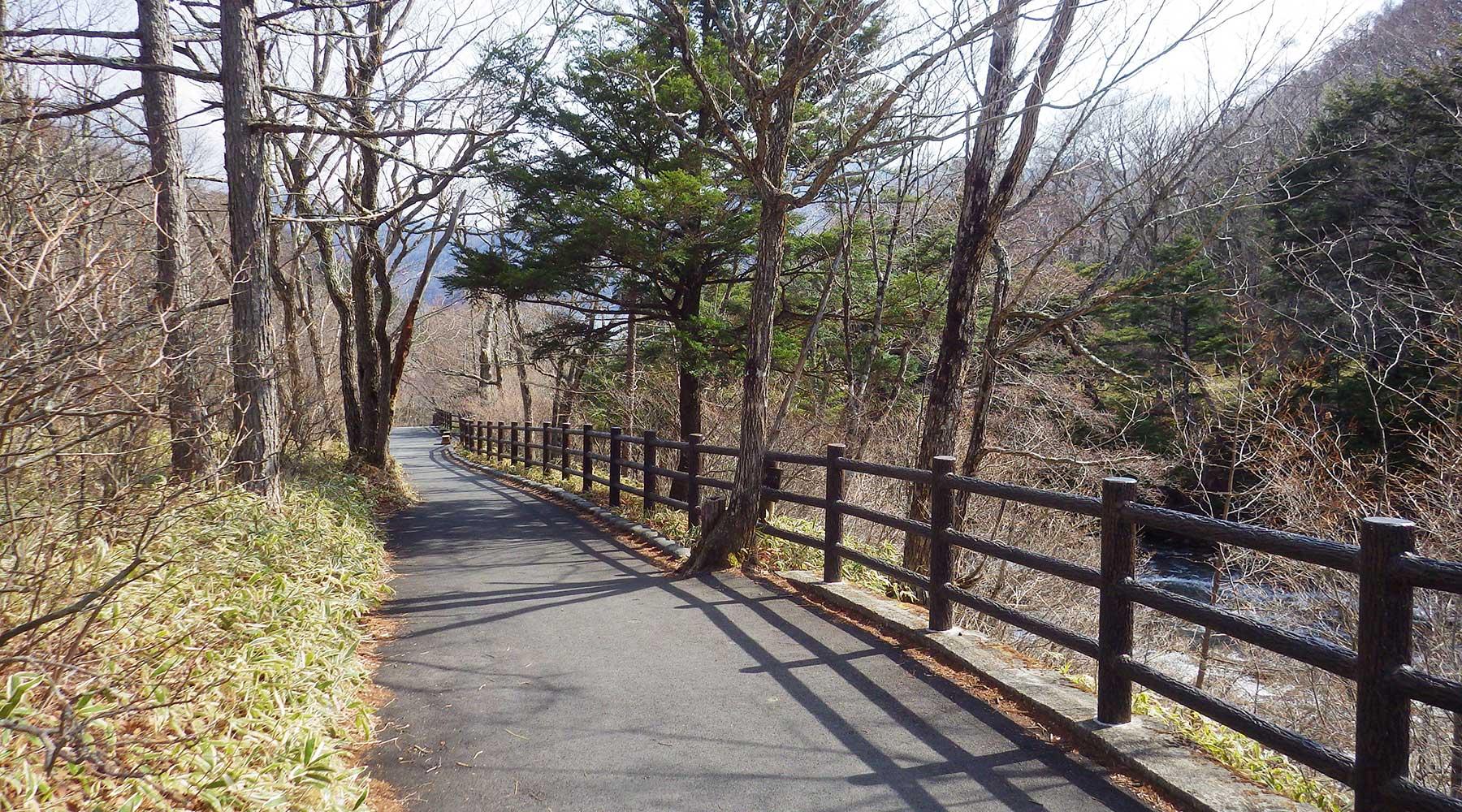 竜頭の滝沿いの遊歩道