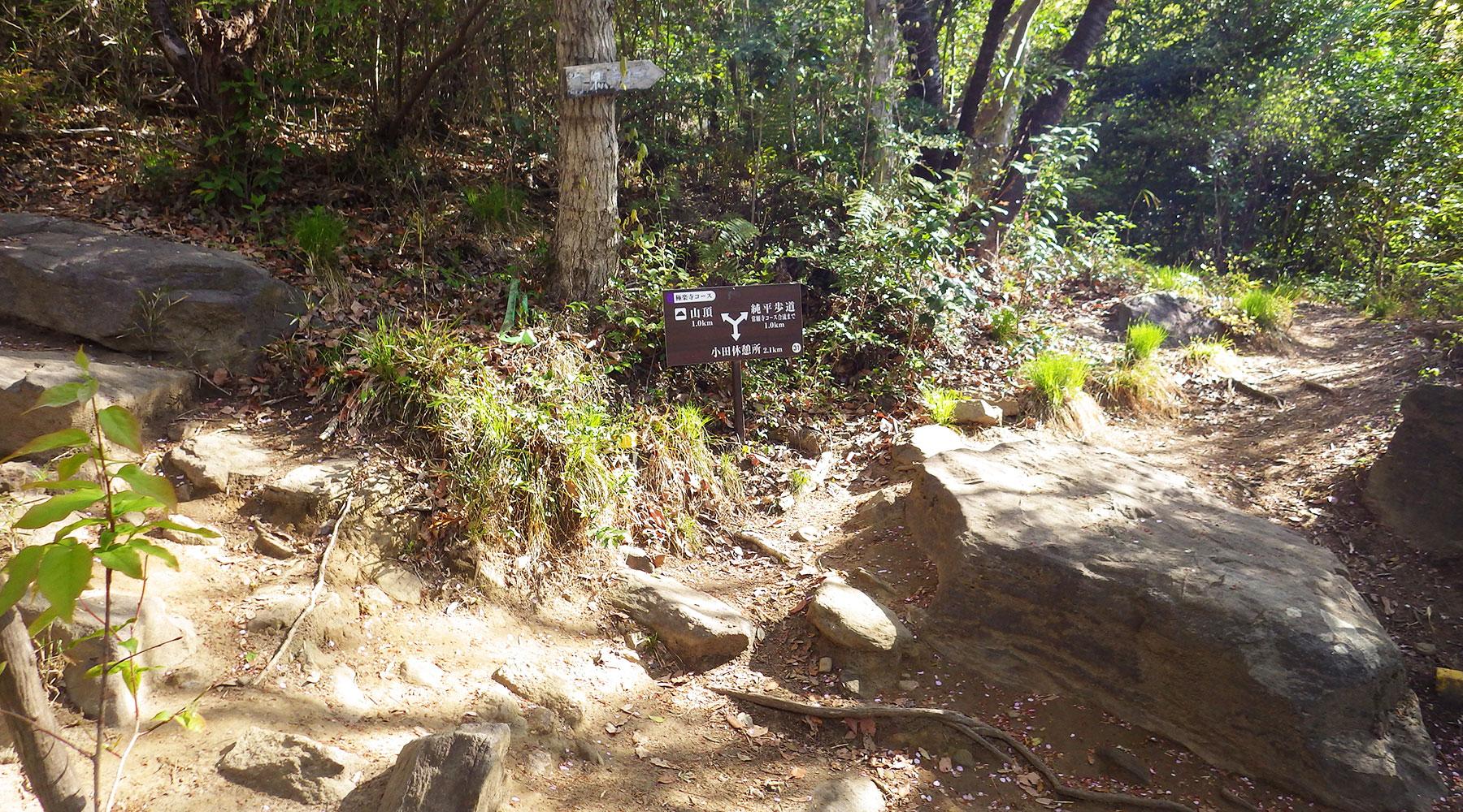 宝篋山・極楽寺コース上の純平歩道から山頂方面への分岐