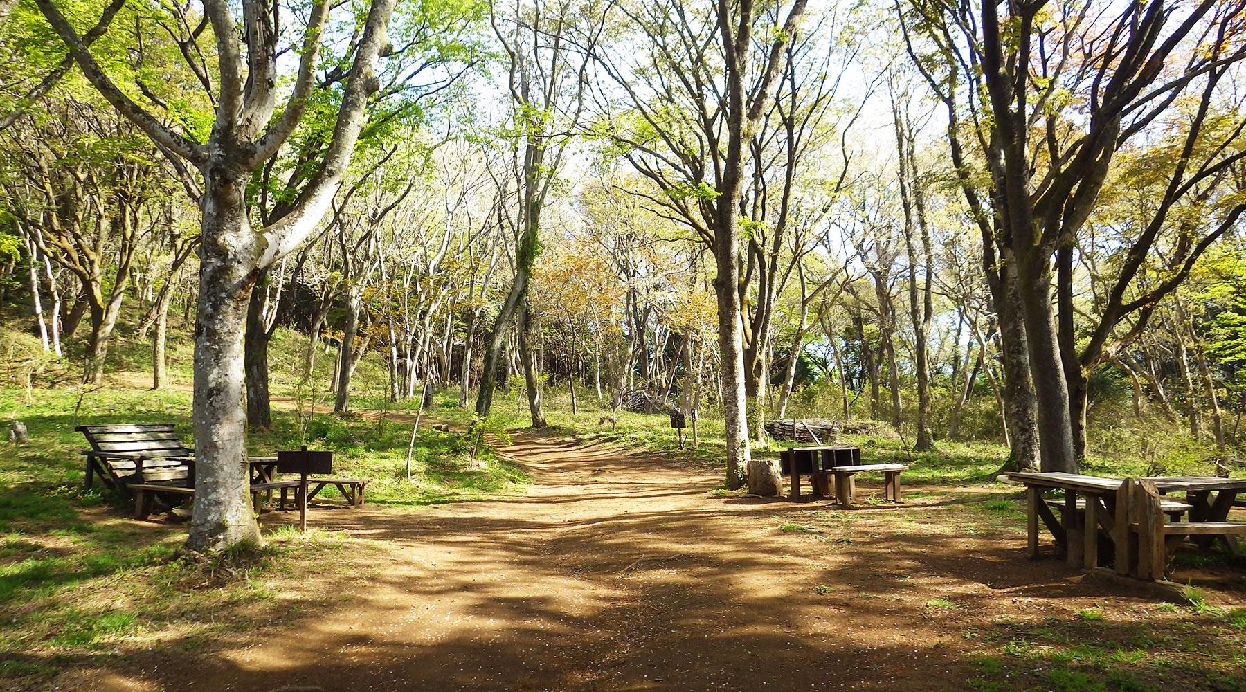 宝篋山・山桜の森にあるテーブルとベンチ