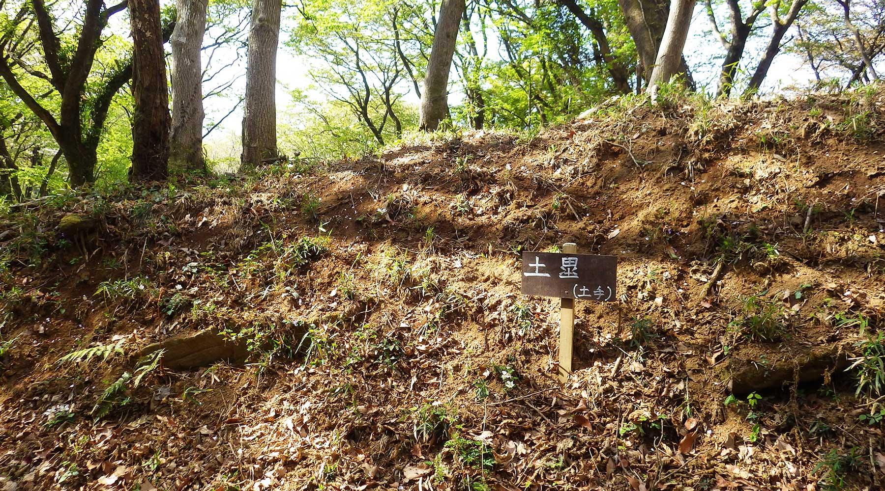 宝篋城の土塁跡