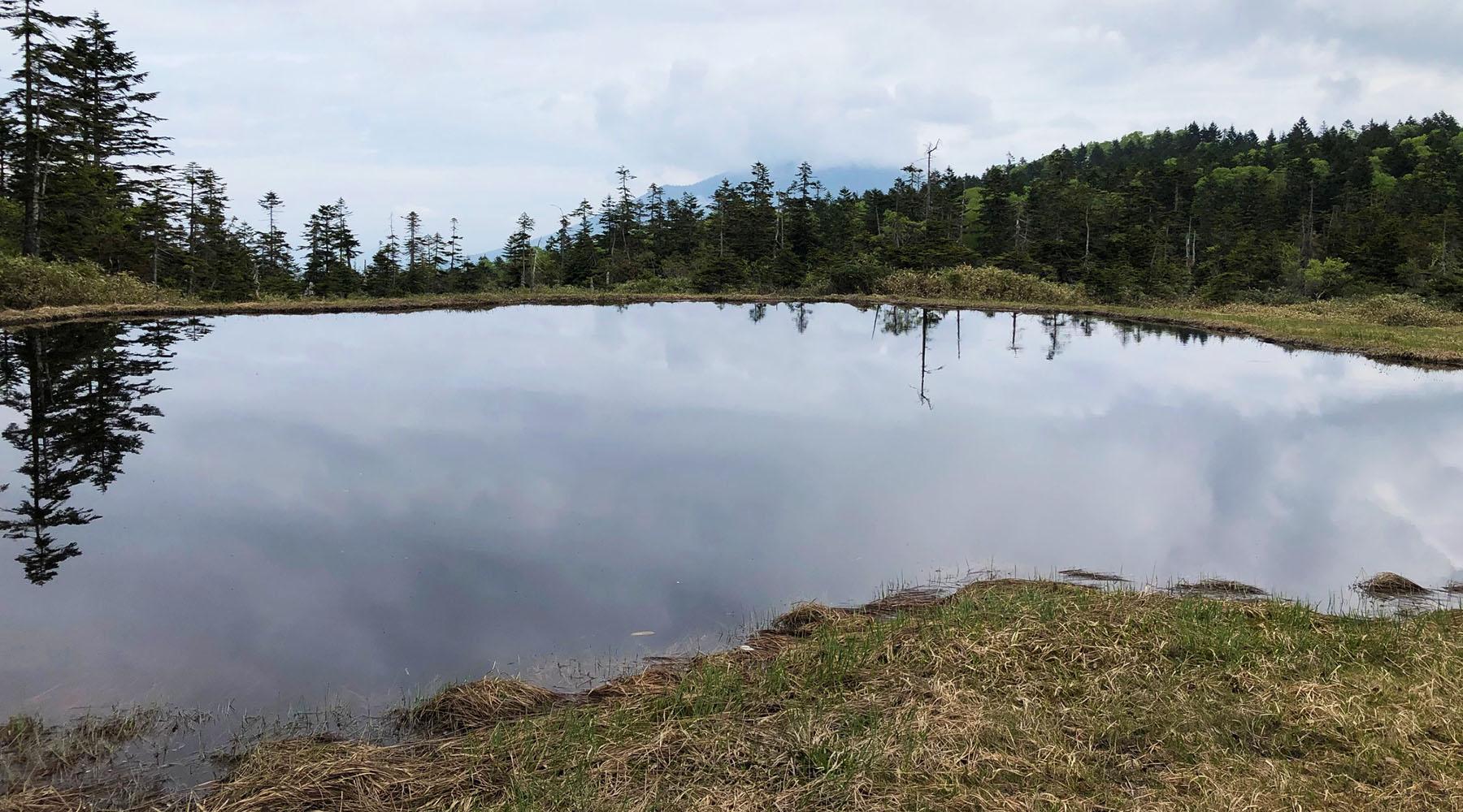 富士見田代の池