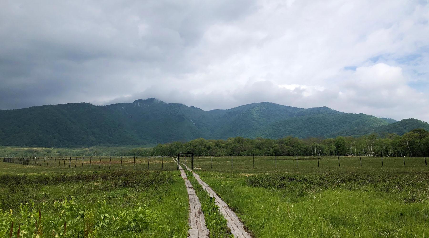 尾瀬・長沢新道から竜宮十字路への接続地点
