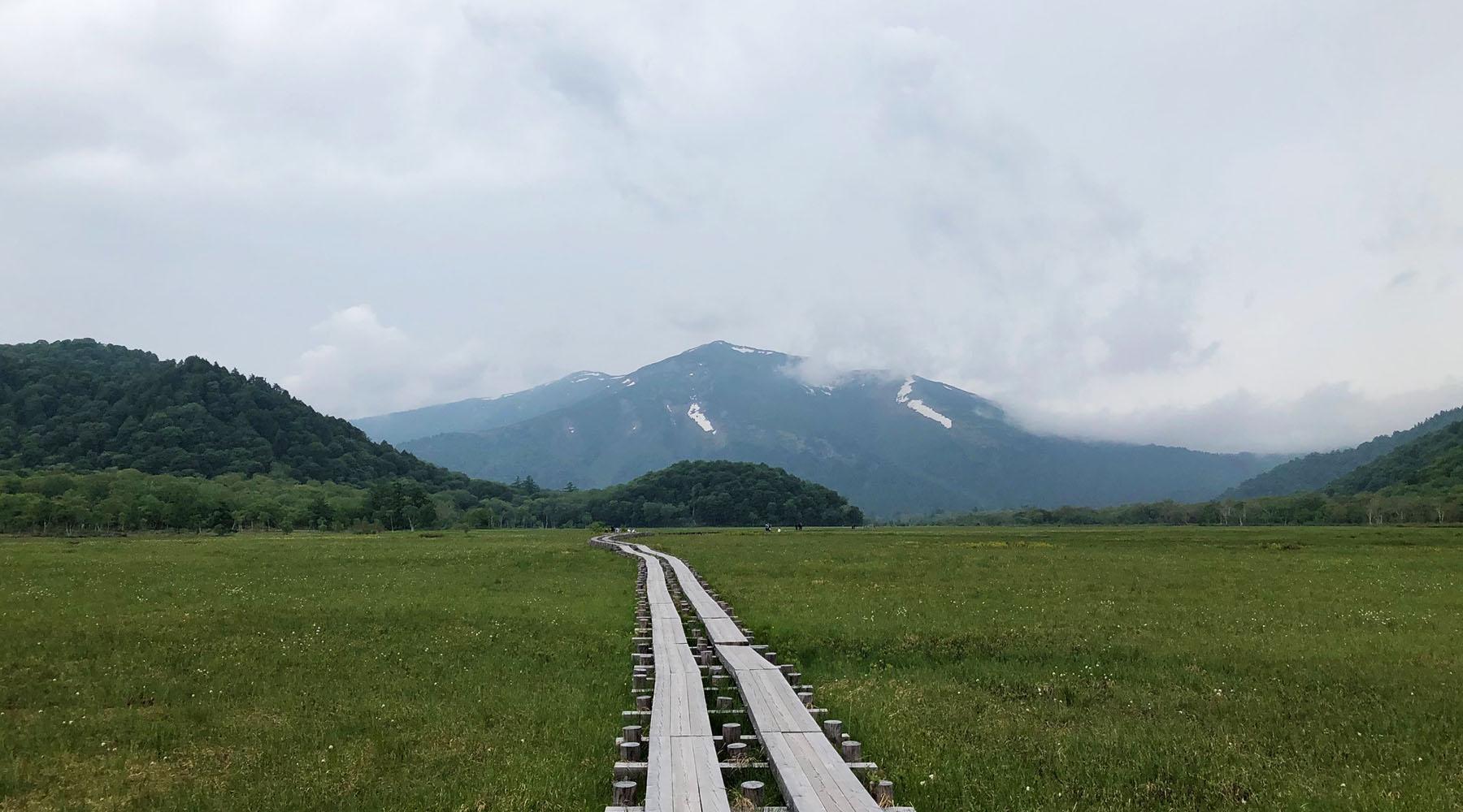 尾瀬ヶ原・牛首分岐から見た至仏山